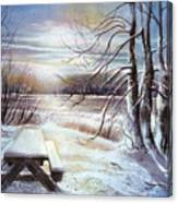 Capturing The Snow Canvas Print