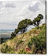 Capulin Volcano View Panorama New Mexico Canvas Print