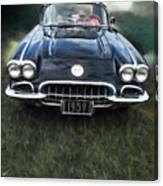 Car On The Grass Canvas Print