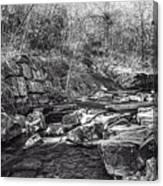 Caradocs Falls 2 Mono Canvas Print