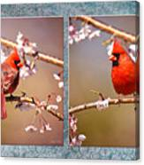 Cardinal Collage Canvas Print