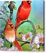 Cardinal Day 3 Canvas Print