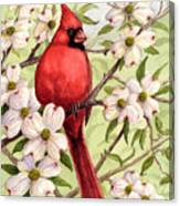 Cardinal In Dogwood Canvas Print