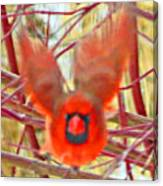 Cardinal In Flight Abstract Canvas Print