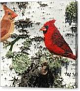 Cardinal Pair II Canvas Print