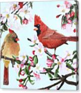 Cardinals And Apple Blossoms Canvas Print