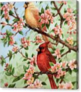 Cardinals In Apple Blossoms Canvas Print