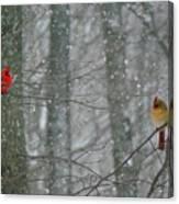 Cardinals In Snow Canvas Print