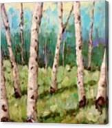 Carefree Birches Canvas Print