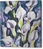 Caribbean Callas Canvas Print