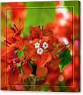 Caribbean Floral Surprise Canvas Print