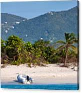 Caribbean Island Canvas Print