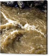 Caribou Stream Rapids Canvas Print