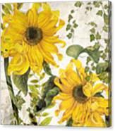 Carina Sunflowers Canvas Print