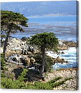 Carmel Seaside With Cypresses Canvas Print