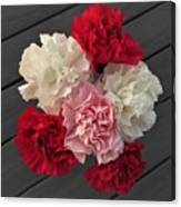 Carnations Canvas Print