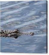 Carolina Beach Marina Alligator Canvas Print