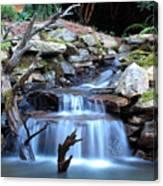 Carolina Mountain Stream Canvas Print
