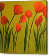 Carolina Tulips Canvas Print