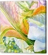 Carols-iris-i Canvas Print