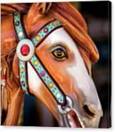 Carousal Horse Canvas Print