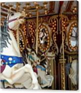 Carrousel 41 Canvas Print