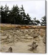 Carved Sandstone Along The Oregon Coast - 2 Canvas Print