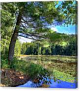 Cary Lake In August Canvas Print