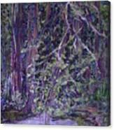 Casa Mesa Canvas Print