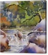 Cascade 2 Canvas Print