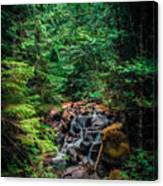Cascade Creek Canvas Print