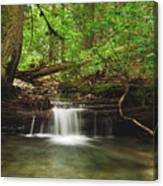 Cascade Happy Trail Canvas Print