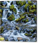 Cascade Of Many Waters Canvas Print