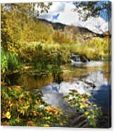 Cascade Springs Large Pool  Canvas Print
