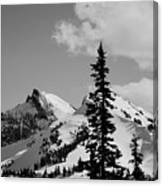 Cascades 1 Canvas Print