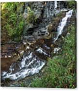 Cascadilla Falls Creek Gorge Trail Giant's Staircase Canvas Print