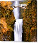 Cascading Gold Waterfall Canvas Print