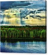 Cascading Light Canvas Print
