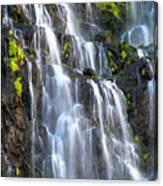 Cascading Springs Snake River Canyon Canvas Print