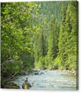 Casting To Cutthroats On The Oldman River Canvas Print