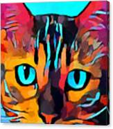 Cat 10 Canvas Print