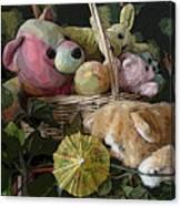 Cat Alert Canvas Print