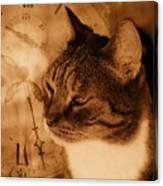 Cat And Clock Canvas Print