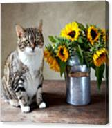 Cat And Sunflowers Canvas Print