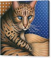 Cat Andrea Canvas Print