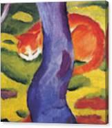 Cat Behind A Tree Canvas Print