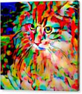 Cat By Fauvism Canvas Print