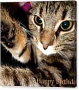 Cat Card Canvas Print