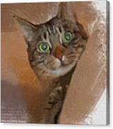 Cat Desire. Canvas Print