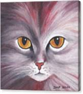 Cat Eyes Red Canvas Print